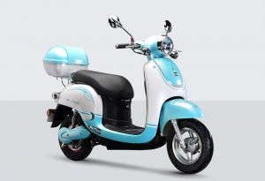 Electric Scooter RK-S1304