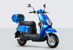Electric Scooter RK-S1312