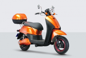 Electric Scooter RK-S1313
