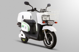 Electric Scooter RK-S1311