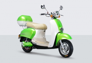 Electric Scooter RK-S1315