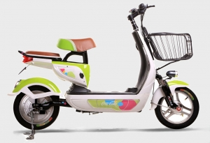 Electric Bike RK-B1308