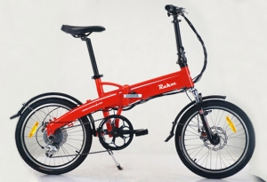 Electric Bike RK-B1309