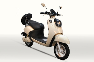 Electric Scooter RK-S1601