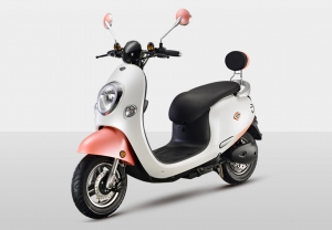 Electric Scooter RK-S1802